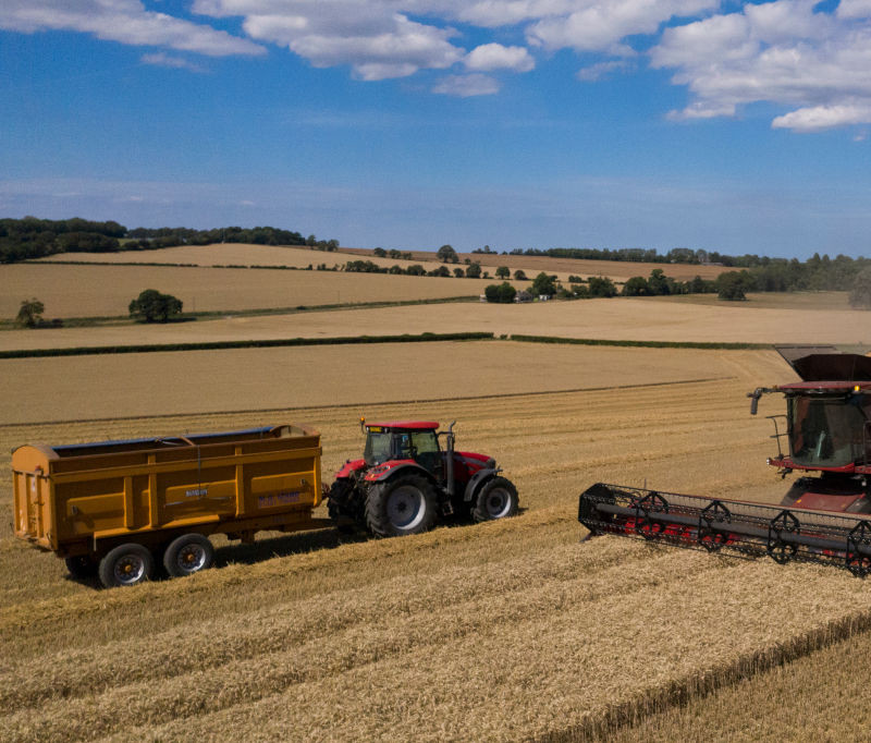 UK farmers to need 'thousands of foreign workers' next summer