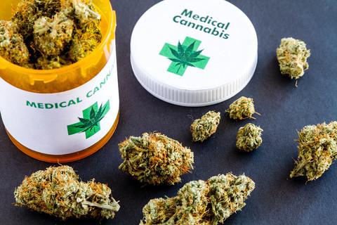 82% Brytyjczyków chce legalizacji medycznej marihuany