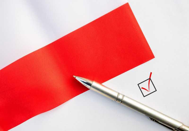 Polonia europejska wybiera